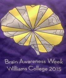 BAW-2015-WCneuro
